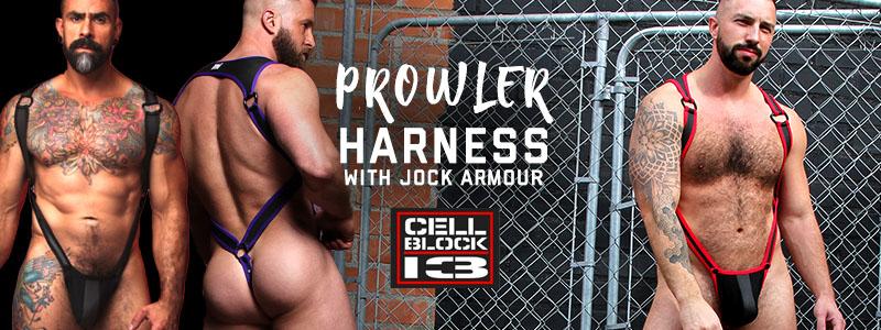 Cellblock Prowler